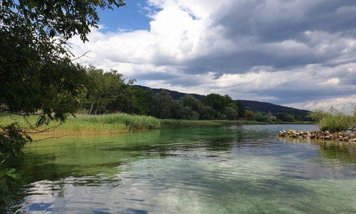 Lac Neuchâtel - Concise
