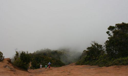 """Waimea Canyon """"Lookout"""""""