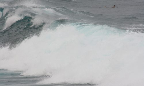 Jaws Big Waves